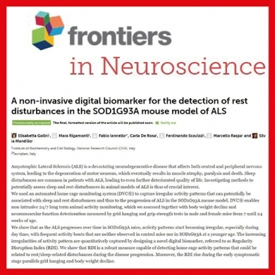 DVC® discovers novel activity patterns potentially correlated with sleep and rest disturbances in mice models