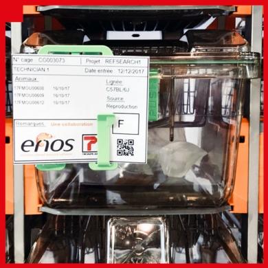 Tecniplast DVC® talks to enos software