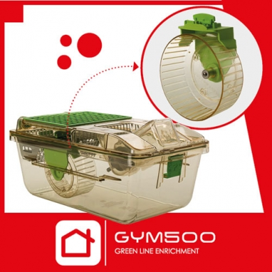 GYM500 Running Wheel: Tecniplast new enrichment specifically designed to promote mice voluntary activity in IVCs