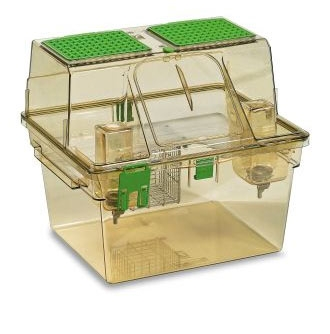 Two Level cages: what Rat Mother want. Rodent Caging Evolution and welfare Outcomes