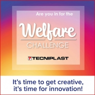 Tecniplast launches a contest to find the best enrichment for mice and rats!