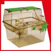 Effet de la cage à deux niveaux ventilée individuellement (Individually Ventilated Bi-Level Caging) sur le comportement anxieux et les performances de reproduction chez le rat (1)