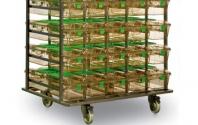 Transport cages et biberons